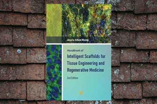 Medium book main image handbook of intelligent scaffolds